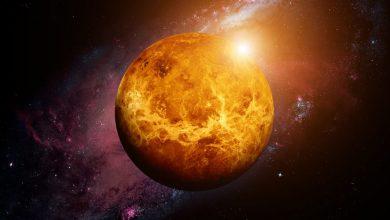 Photo of На Венері виявили неймовірні докази існування життя