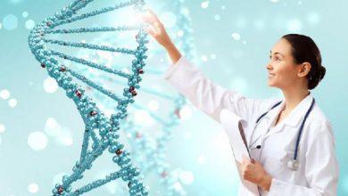 Photo of Секрети генетики: чи передаються риси характеру і шкідливі звички у спадок