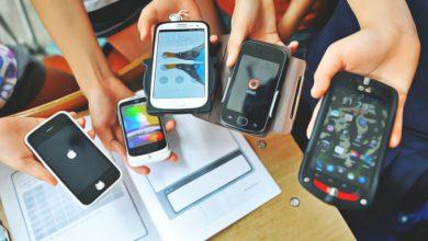 Photo of Вчені стверджують, що випромінювання від мобільних телефонів може вбивати комах