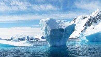 Photo of В Арктиці вчені спостерігають за незвичайним природним явищем