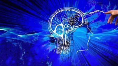 Photo of Вчені стверджують, що алкоголь навіть в малих дозах знищує мозок