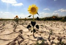 Photo of Вчені попереджають про загрозу глобальної посухи