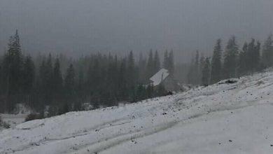 Photo of Посеред осені в Карпатах знову випав сніг