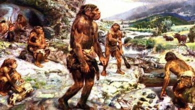 Photo of Вчені встановили, що спонукало давніх людей розвиватися