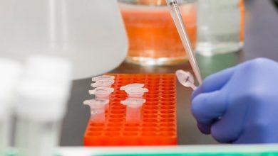 Photo of Британські вчені розробили новий «п'ятихвилинний» тест на коронавірус