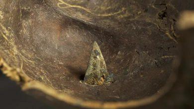 Photo of Вчені знайшли місце масштабної битви бронзового століття