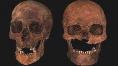 """Photo of Шотландські археологи розкрили таємницю поховання """"шестиголового вождя"""""""