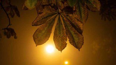 Photo of У Києві зафіксували найтепліші ночі за останні 127 років