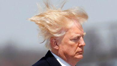 Photo of Трамп витратив 70 тисяч доларів на свою зачіску і це назвали податковим шахрайством