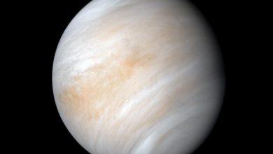 Photo of Виявлено ще одну ознаку існування життя на Венері
