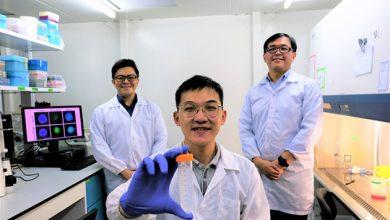 """Photo of """"Троянський кінь"""": у Сінгапурі вчені придумали, як лікувати рак без ліків (ВІДЕО)"""