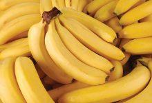 Photo of Як правильно зберігати банани: 5 корисних порад