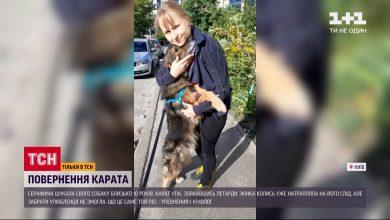 Photo of У Києві собака повернувся до своєї господарки через 11 років після зникнення (ВІДЕО)