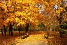 Photo of Тепліше, ніж зазвичай: синоптики дали прогноз на осінь і зиму