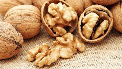 Photo of Волоські горіхи: в чому користь та чому їх варто додати до свого раціону