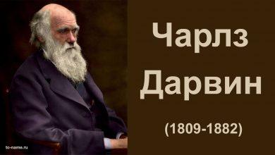 Photo of У Кембріджському університеті зникли записні книжки Чарльза Дарвіна