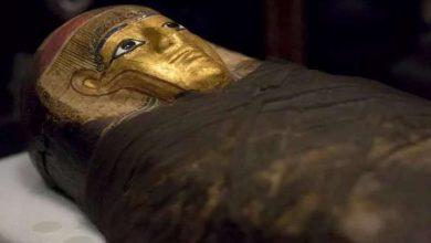 Photo of Всередині дитячої мумії вчені виявили незвичайний артефакт