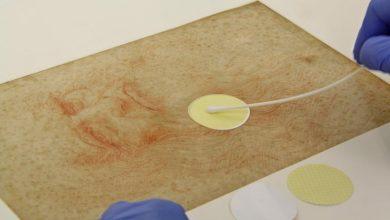 Photo of На малюнках Леонардо да Вінчі знайшли ДНК людини