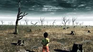 Photo of Вчені стверджують, що кліматичної катастрофи на Землі вже не уникнути