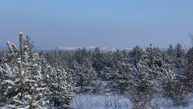 Photo of Яка погода чекає українців у грудні: прогноз синоптиків