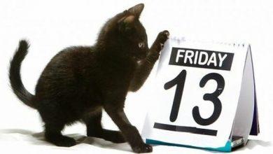 Photo of П'ятниця 13-е: особливості дня та чи дійсно варто боятися