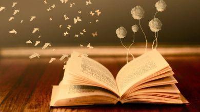 Photo of Книги, які варто прочитати кожному: корисне, різне, про головне