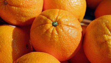 Photo of Апельсини можуть стати основою препаратів від COVID-19