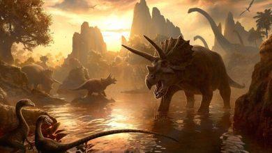 Photo of До падіння 65 млн років тому на Землю астероїда на планеті домінували динозаври