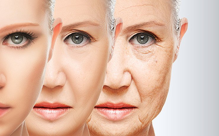 Знайдено спосіб повернути процес старіння людини в зворотному напрямі