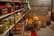 Photo of Українці перестали робити великі запаси овочів на зиму
