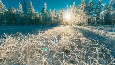 Photo of День зимового сонцестояння 2020: дата і значення