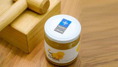 Photo of У штаб-квартирі НАТО зібрали перший врожай меду