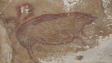 Photo of Археологи знайшли в Індонезії наскальне зображення, вік якого 45 тисяч років