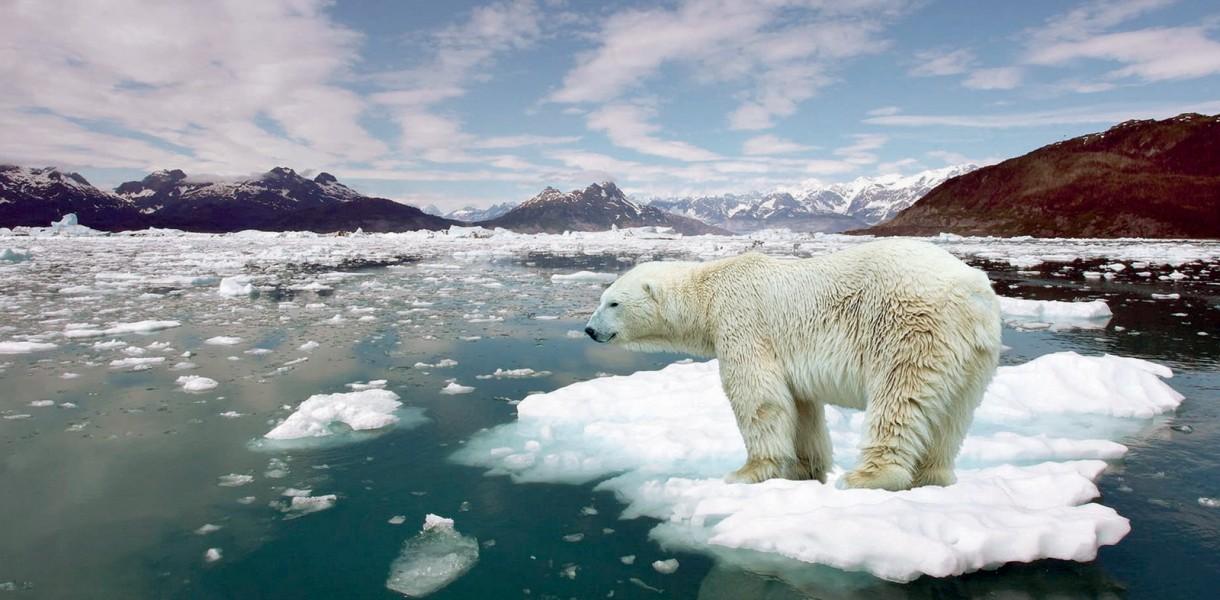 Експерти повідомили, що кліматична катастрофа неминуча