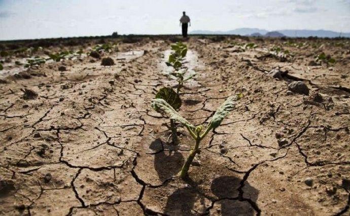 В Україні відбудуться глобальні зміни клімату
